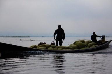 Transporting sacks on Inle Lake, Myanmar