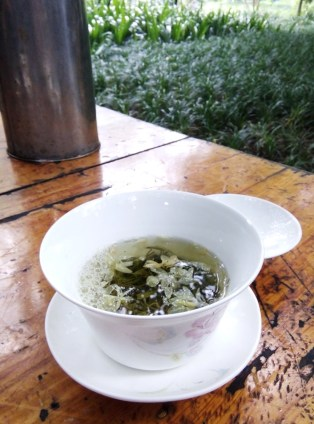 Jasmine tea in People's Park, Chengdu, China