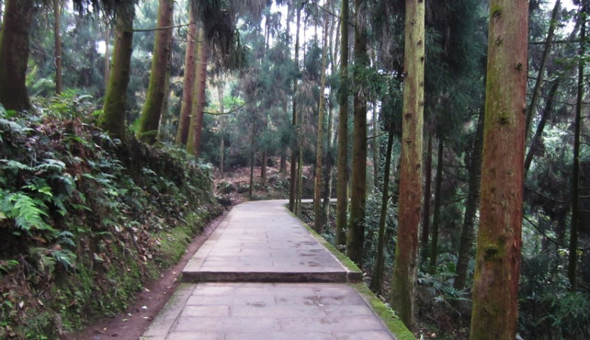 Emei mountain hiking trail