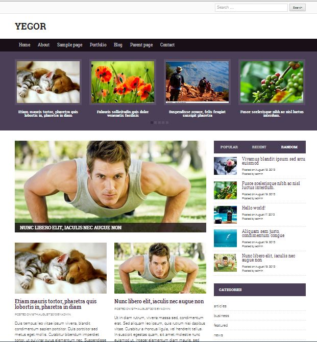 free wordpress themes yegor