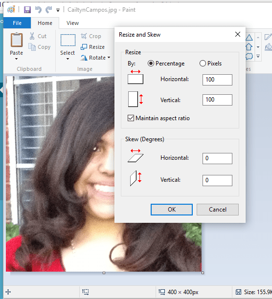 Use paint to resize an image