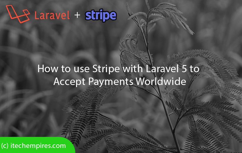 How to use Stripe with Laravel 5 to accept payments worldwide