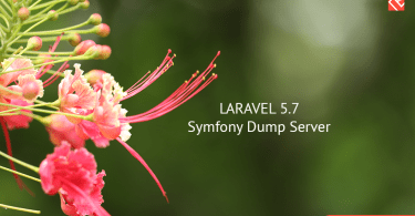 Understand Uses of Laravel 5.7 Dump Server
