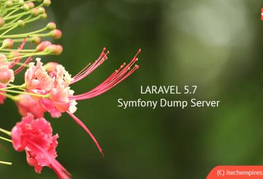 Understand Uses of Laravel 5.7 Dump Server