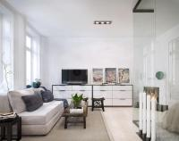 Comfy Small Black and White Apartment Living Room