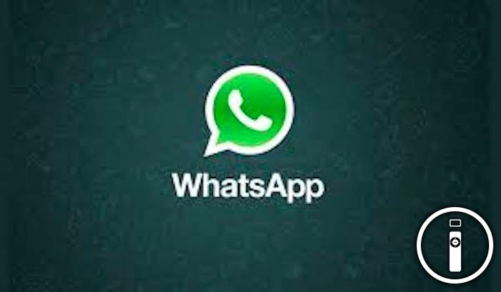 Whatsapp, è arrivato l'aggiornamento per cancellare i messaggi inviati per errore