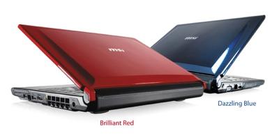 MSI EX310 Fashionable AMD Notebook