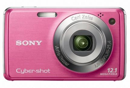 Sony Cyber-Shot DSC-W220 Compact Camera