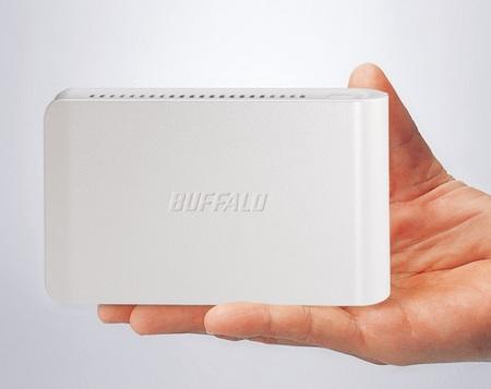 Buffalo LinkStation LS-S500L Portable NAS on hand