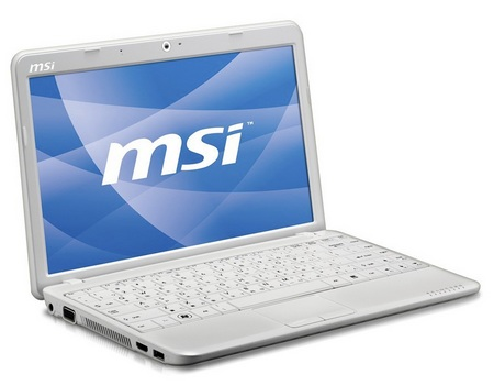 MSI Wind U210-008US netbook