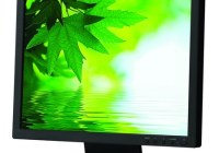 NEC AccuSync AS171 Eco-Friendly LCD Display