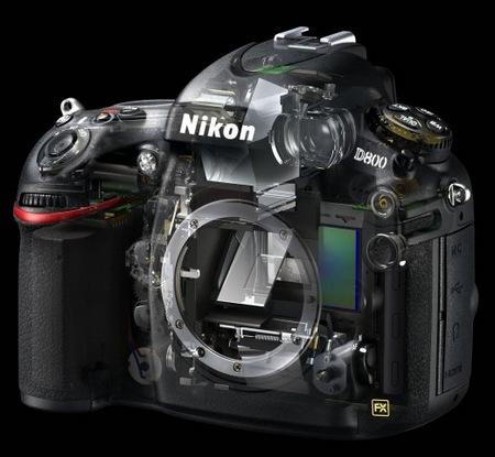 Nikon D800 and D800E 36.3 Megapixel FX-Format DSLRs skeleton