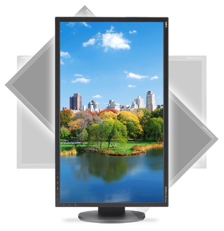 NEC MultiSync EA223WM LED-backlit Display for Enterprise
