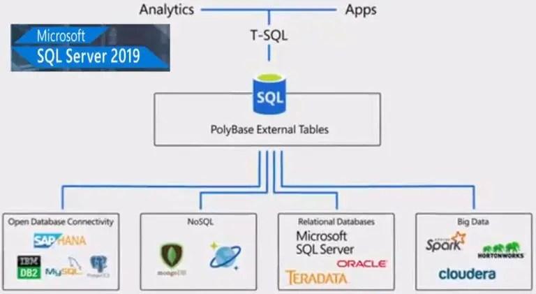 microsoft sql server management studio 2019