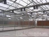 INTA – Sección Genética Predio Castelar – 2007