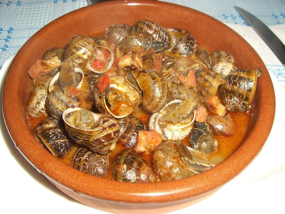 Cucina di Sardegna Lumache al sugo   IteNovascom