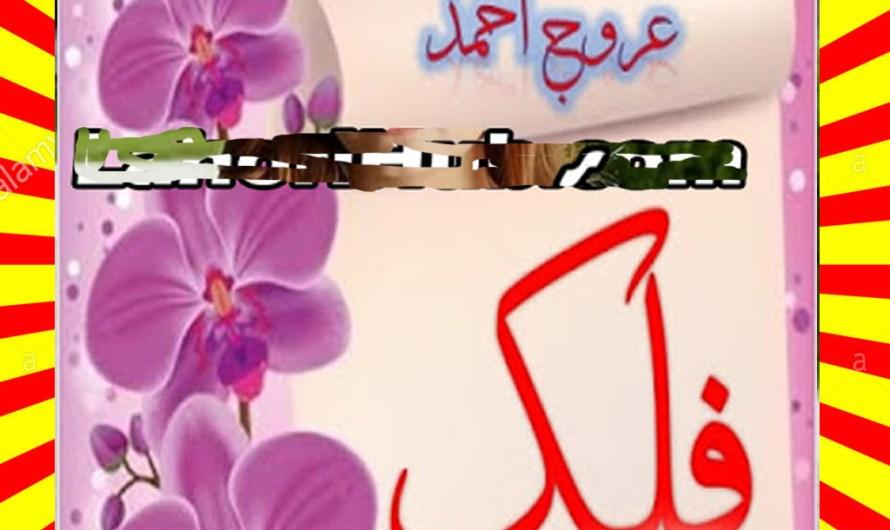 Falak Urdu Novel By Urooj Ahmed Episode 2