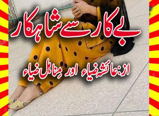 Bekar Se Shahkar Urdu Novel By Ayesha Zia & Minahil Zia