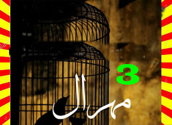 Mehraal Urdu Novel By Sania Mumtaz Part 3