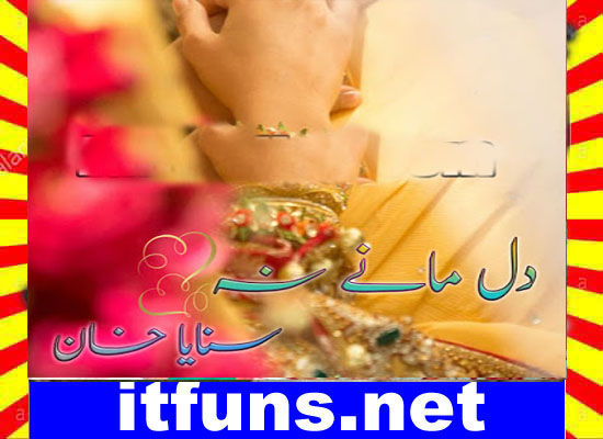 Dil Many Na Urdu Novel By Sanaya Khan