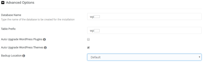 install wordpress advance option