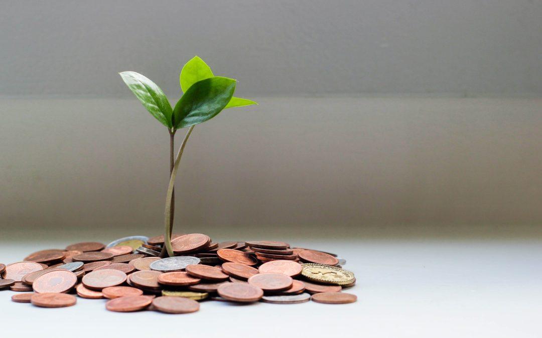 Modalités de publication et d'affichage du plan de financement d'une opération d'investissement subventionnée par des personnes publiques