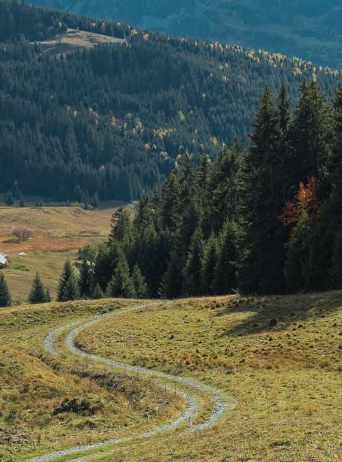 Chemins ruraux : pas d'obligation d'entretien, ou presque…