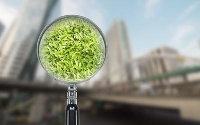 Évaluation environnementale : les apports du décret du 29 juin 2021