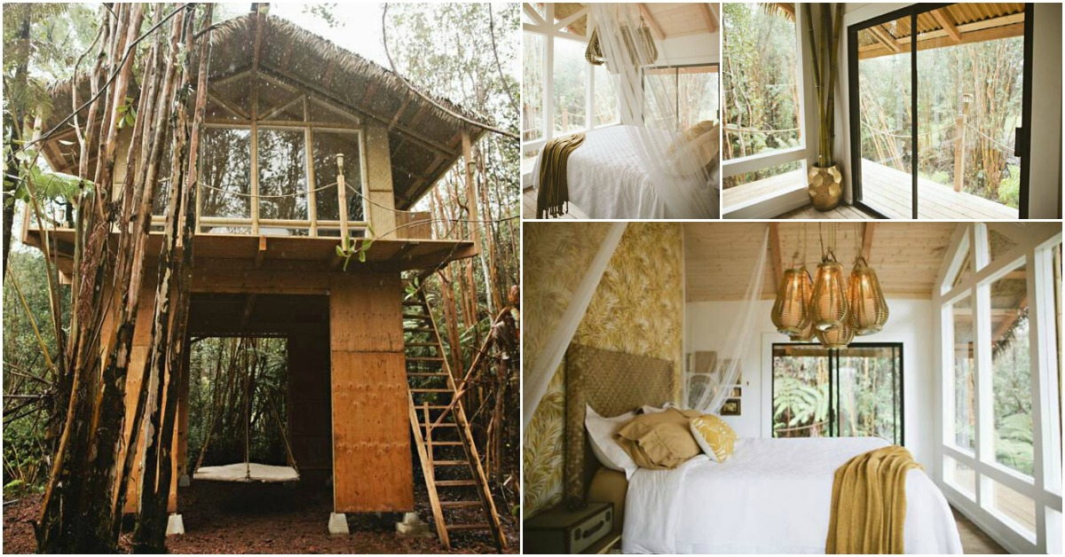 This Tiny Vacation Home In Hawaii Is Like A Whimsical Tree
