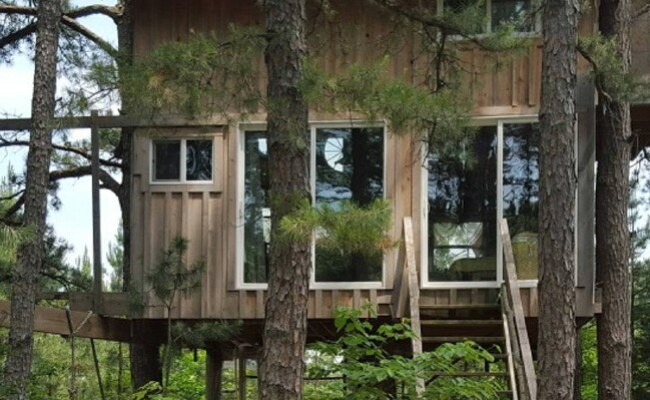 Rent This Cozy Tiny House In The Trees For Your Next