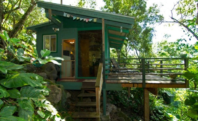 Stay At The Tiny And Eco Friendly Sunset Beach Treehouse