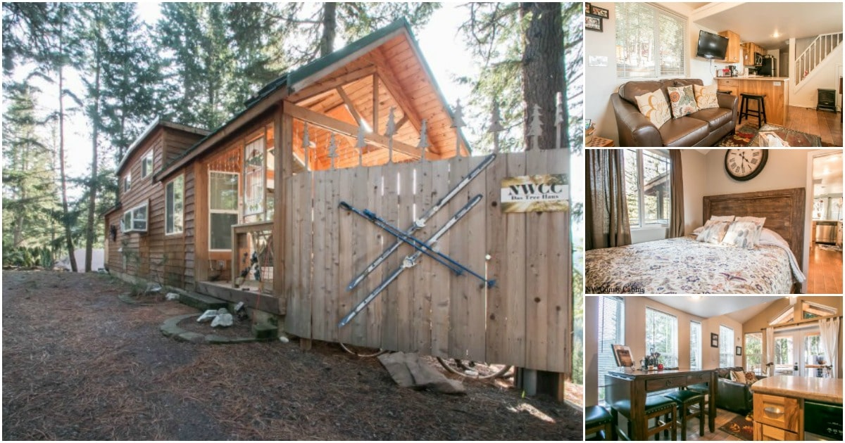 Das Tree Haus Awaits You With Rustic Charm