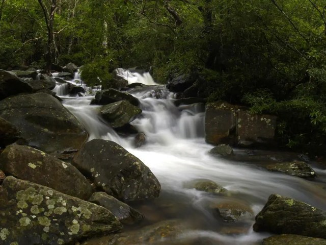 Bride's Pool Nature Trail | 船灣大美督新娘潭自然教育徑