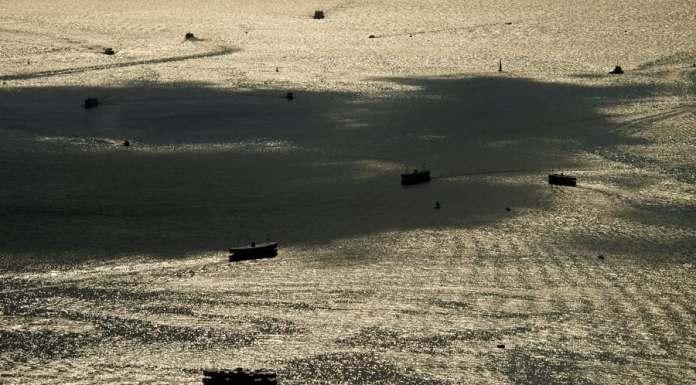 Ships at Victoria Harbour, Deep Water Ports at Hong Kong | 維港深水港