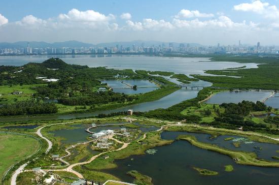 Hong Kong Wetland Park Bird View  | 香港濕地公園鳥瞰