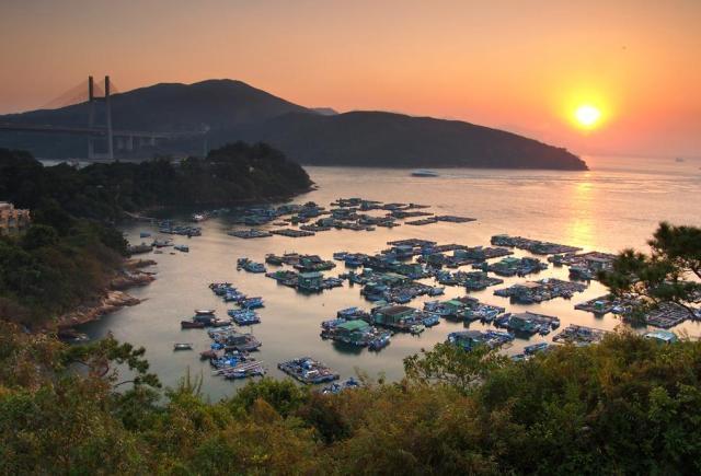 Floating Fishing Rafts at Tam Shui Wan and Shek Tsai Wan | 淡水灣和石仔灣的漁排