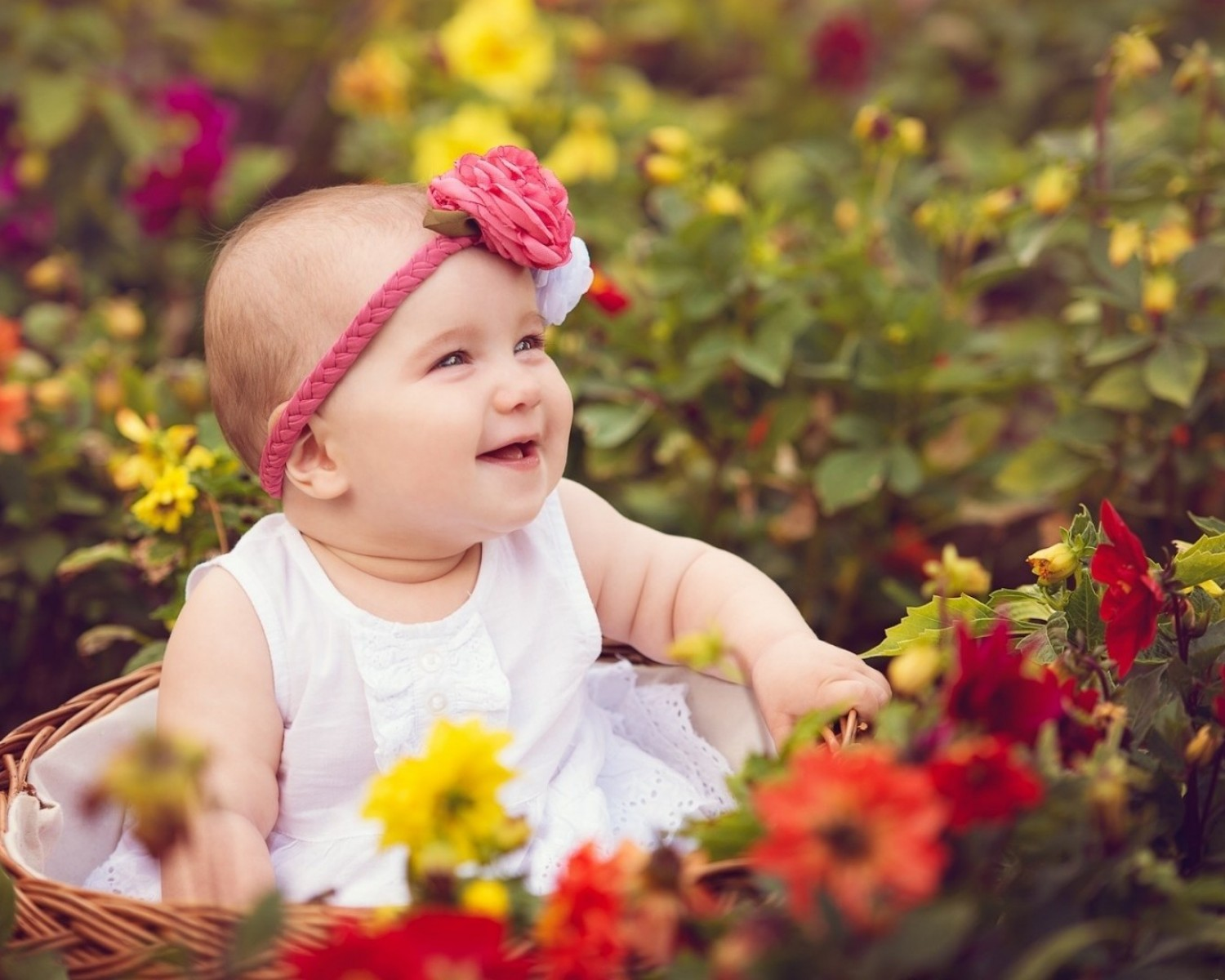 Child Images Wallpaper Baby Whatsapp Dp For Girl 763241 Hd Wallpaper Backgrounds Download