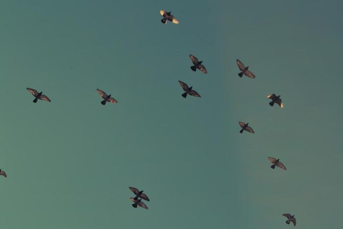 AWS Database Migration