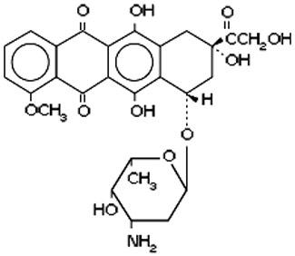 Amino Acid Supplements IV: Theanine