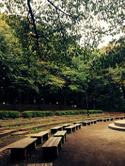 石神井公園にてウクレレ