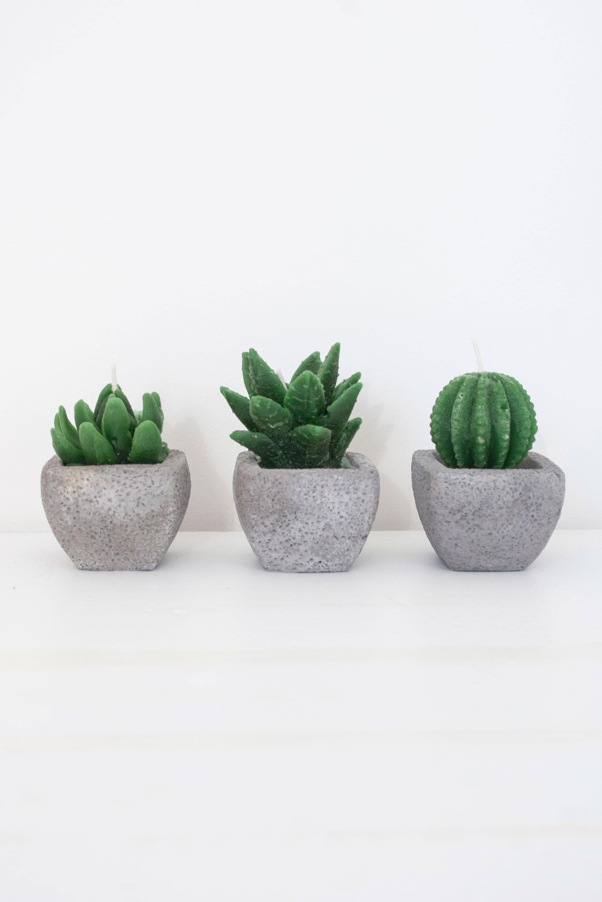 Cacti: an Anti-Tech Fashion Wearable