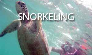 snorkeling - i travel rox