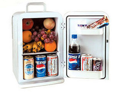15 Liter Mini Fridge Cooler & Warmer - Essential Accessories For Home, Office And Outside Picnics