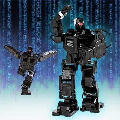 MechRC Robot