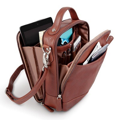 The Sightseer's Argentinian Leather Carryall