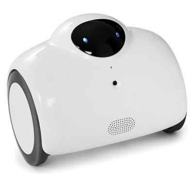 The Smartphone Controlled Home Patrolling Robot