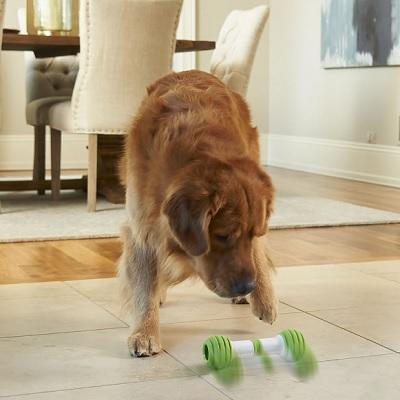 Interactive Dog Bone