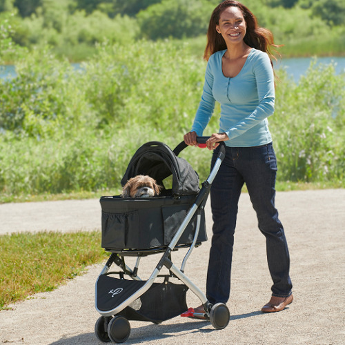 Pet Stroller And Carrier