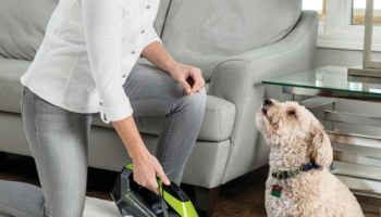 Cordless-Carpet-Stain-Remover