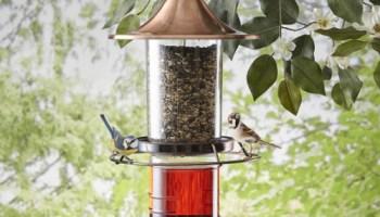 Hummingbird-And-Song-Bird-Feeder